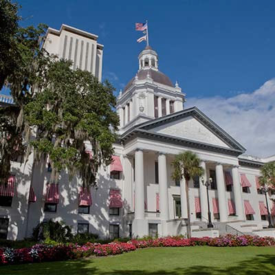 /images/portfolio/leon/leon county government of florida