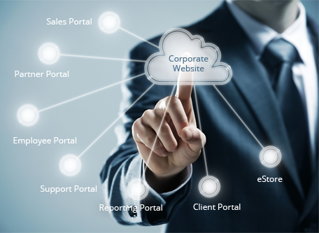 Clarity specializes in employee, client, partner, channel, sales portals