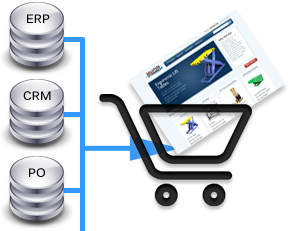 Clarity eCommerce started from Enterprise ERP, CRM integrations